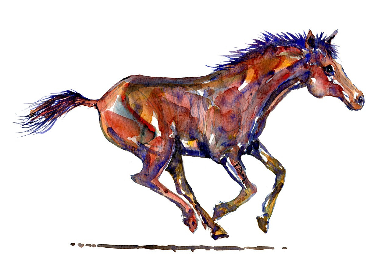Akvarel af en hest der løber. Ren akvarel af Frits Ahlefeldt