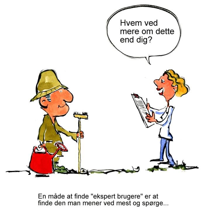 en konsulent spørger ekspert - illustration af Frits Ahlefeldt