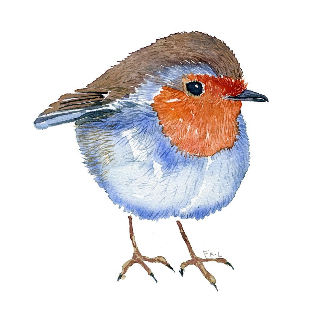 Rødhals fugl Akvarel af Frits Ahlefeldt