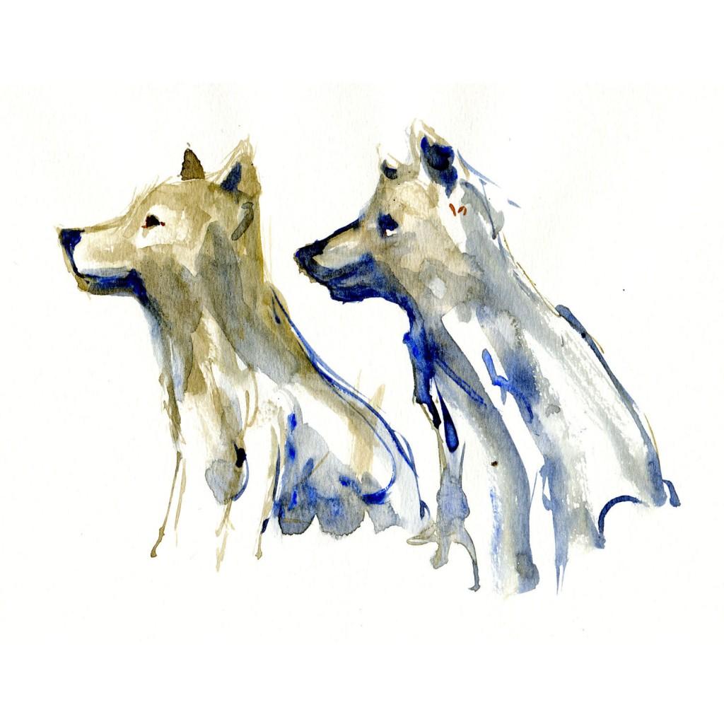 Ulveunger Pattedyr illutration biodiversitet i Danmark. Akvarel af Frits Ahlefeldt