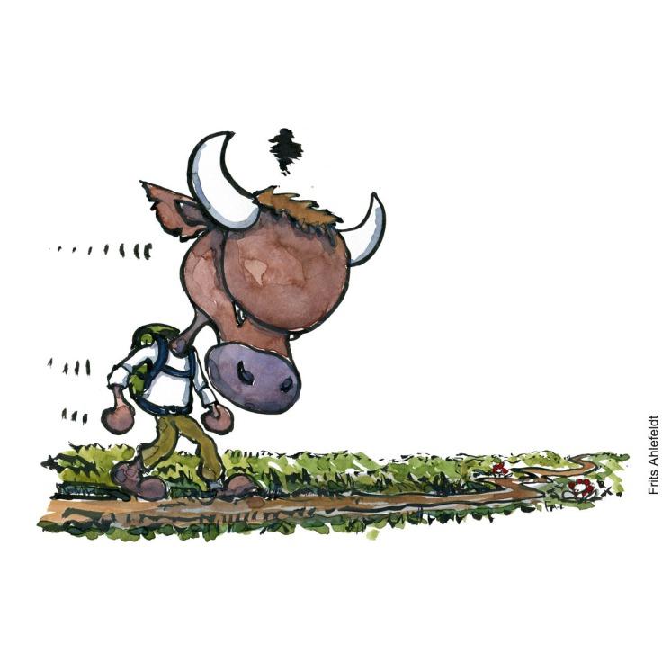 Tegning af en vred tyr og vandrer som går langs en sti - illustration af Frits Ahlefeldt